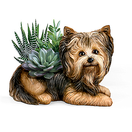 Yorkie Planter With Always In Bloom Succulents