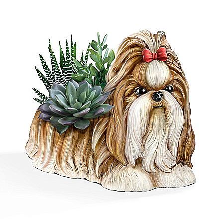 Shih Tzu Planter With Always In Bloom Succulents