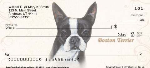 Boston Terrier Portrait Paintings
