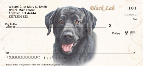 Black Labrador Dog Checks