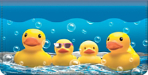 Rubber Ducky Checkbook Cover