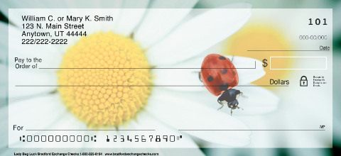 Lady Bug Luck Daisies Checks