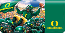 Oregon Spirit Checkbook Cover