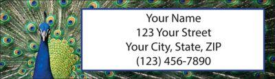 Pretty Peacocks Return Address Label
