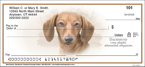 Dachshund Best Breeds Checks