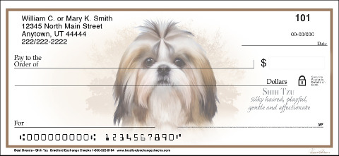 Best Dog Breeds Shih Tzu Checks
