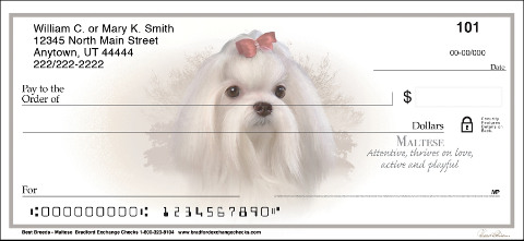 Best Dog Breeds Maltese Checks
