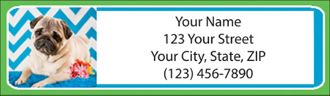 Chevron Pug Address Labels