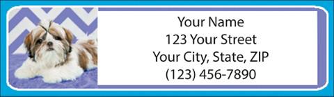 Chevron Shih Tzu Address Labels