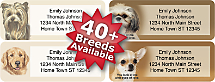 Choose From Over 35 Dog Breeds