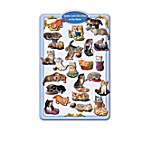 Smitten Kittens Magnet Collection With Free Metal Collector's Display