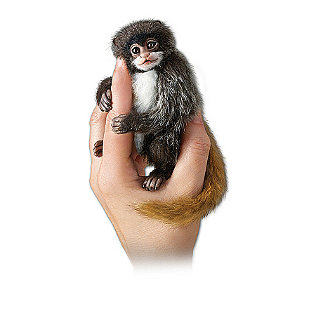Doll Collection: Amazing Amazon Finger Monkeys