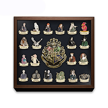 HARRY POTTER Ultimate Pin Collection With Custom Display