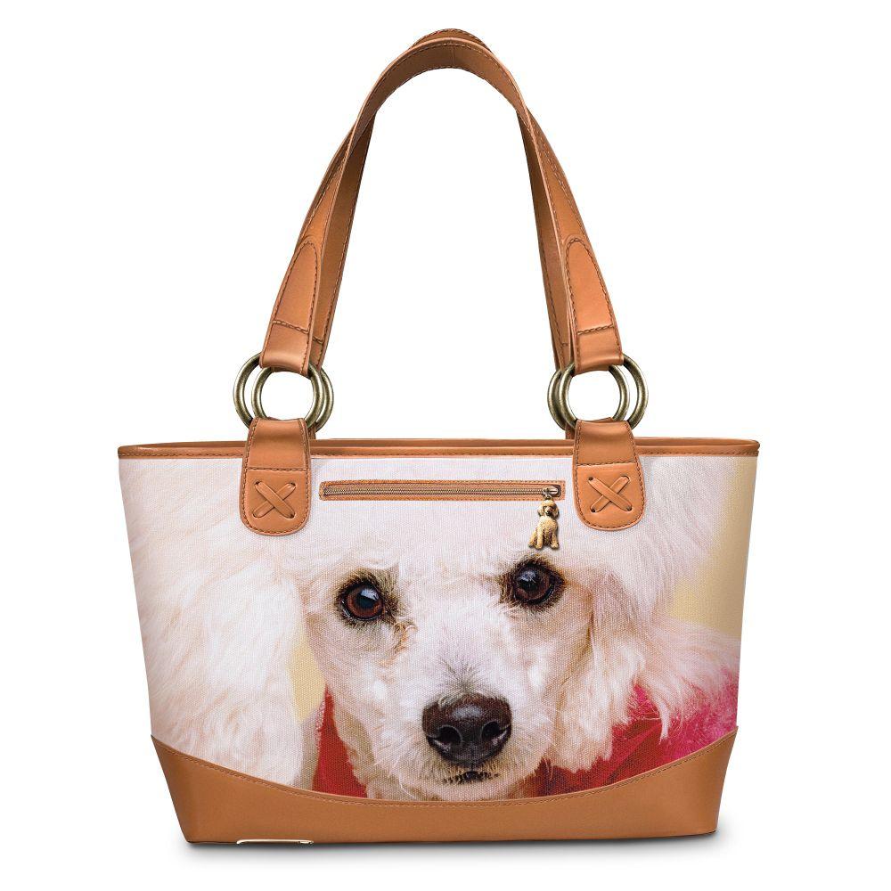 Buy Orijen Dog Food Australia