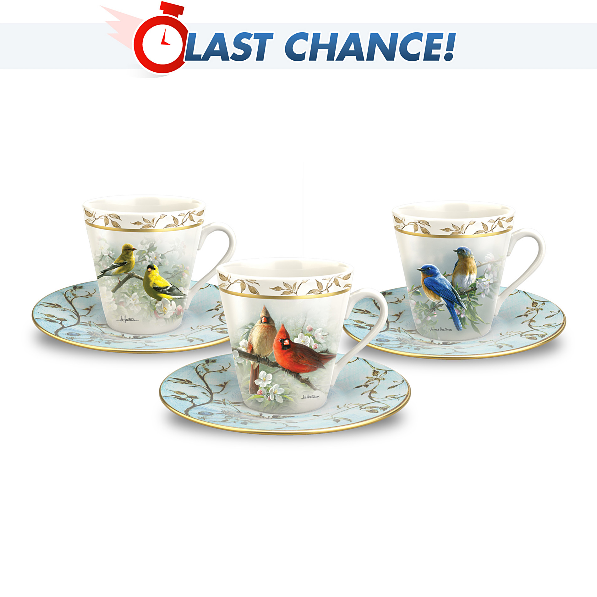 The Bradford Exchange Feathered Friends Teacup & Saucer Set at Sears.com