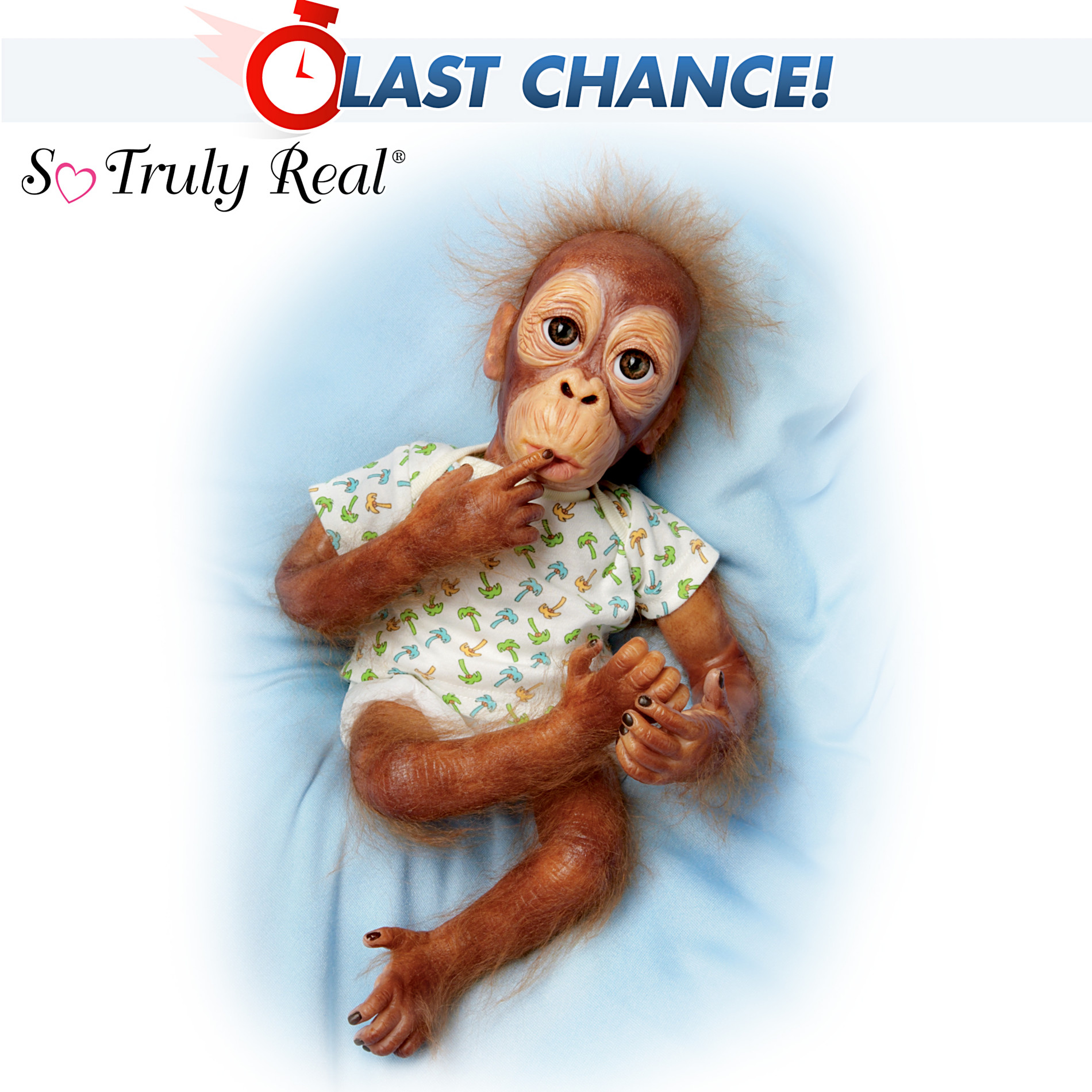 The Ashton-Drake Galleries Lifelike Baby Orangutan Doll: Baby Pongo at Sears.com