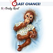The Ashton Drake Galleries Lifelike Baby Orangutan Doll: Baby Pongo at Sears.com