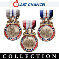 Valor Of The Confederacy Wall Decor Collection