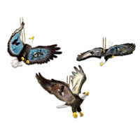 Soaring Strengths Ornament Set