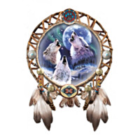 Moonlit Call Dreamcatcher