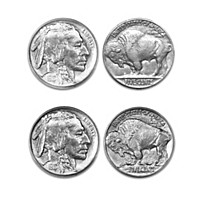 The 1913 Buffalo/Indian Head Nickel Coin Set