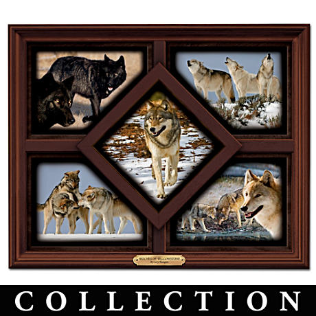 Larry Thorngren's Wolves Of Yellowstone Framed Quintet