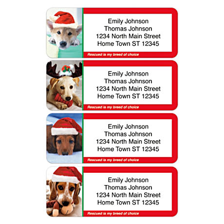 Personalized Address Labels Honor Rescued Dogs At Christmas