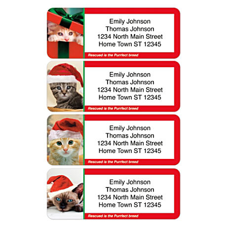 Personalized Address Labels Honor Rescued Cats At Christmas