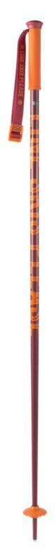 Line Tac Ski Poles Pole