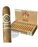 Macanudo Gold Label Duke Of York Connecticut Robusto