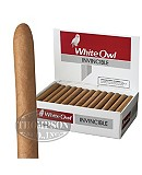 White Owl Invincible Natural Corona