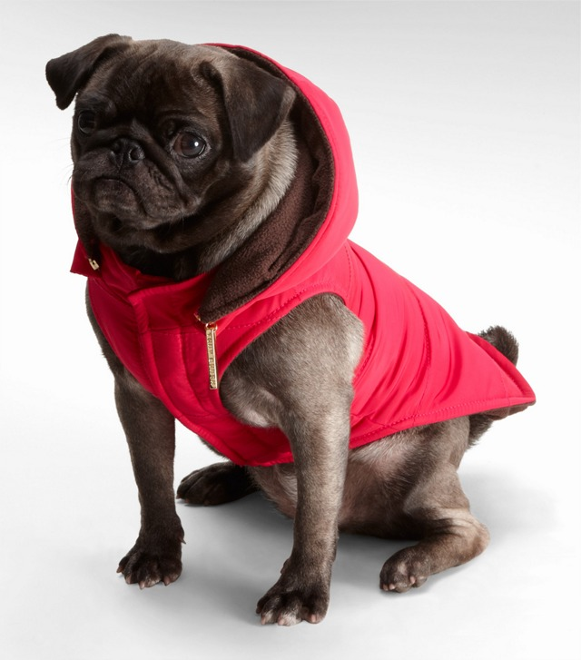 NYLON PUFFER DOG COAT