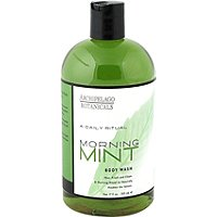 A Daily Ritual Morning Mint Body Wash