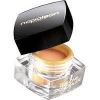 The One Concealer