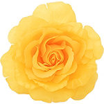 Yellow Flower Pin/Clip