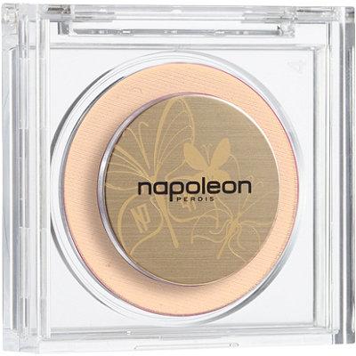 Coupon for napoleon perdis