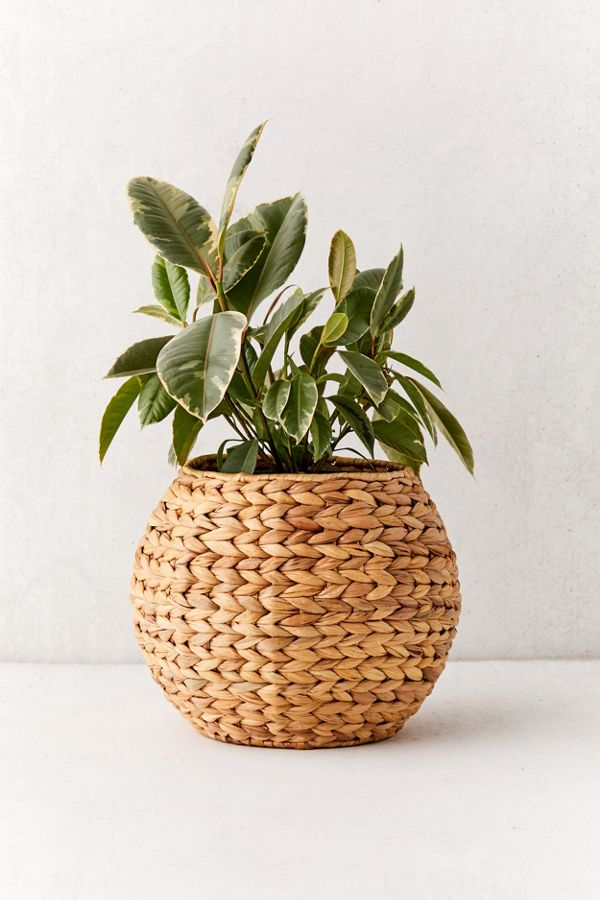 Slide View: 1: Wyn Woven Planter Basket