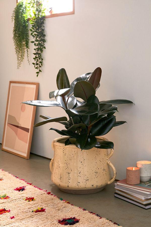 Slide View: 1: Kiera Speckled Ceramic 12� Planter