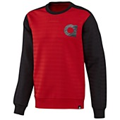 image: adidas The Crewneck Sweatshirt G84360