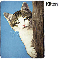Fleece Blanket - Peep Kitten