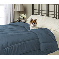 Alt Down Twin Comforter w/ Pillows - Slate Blue