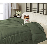 Alt Down Twin Comforter w/ Pillows - Moss