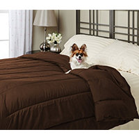 Alt Down Twin Comforter w/ Pillows - Bark