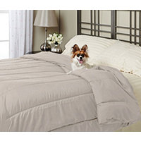 Alt Down Twin Comforter w/ Pillows - Stone