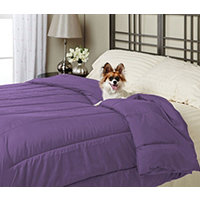 Alt Down Twin Comforter w/ Pillows - Eggplant
