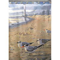 Save 45% Hautman At The Beach Shower Curtain
