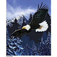 Majestic Eagle & Deer Fun Fur Throw