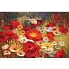 Meadow Poppies I Canvas Wall Art