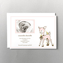 Darling Fawn:  Birth Announcement