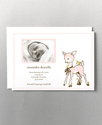 Darling Fawn Birth Announcement